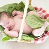 Tüp Bebek transferi öncesinde ,sırasında ve sonrasında nasıl beslenmeli ?Tüp bebek Tedavileri Soru ve Doktor Cevapları -85-