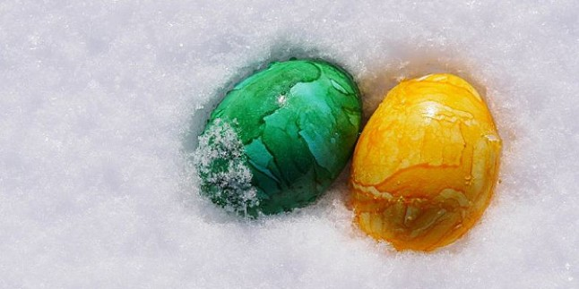 Kadın yumurtası ne zaman dondurulup saklanabilir. ?