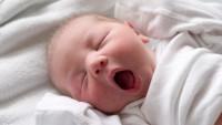 Tüp Bebek Uygulamalarında Başarıyı Etkileyen Faktörler