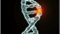 Genetik ve Erkek Kısırlığı nedir?