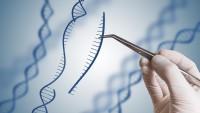 NGS Yeni nesil genetik tarama nedir ? Hangi durumlarda yapılır ? Doç.Dr.Turgut Aydın