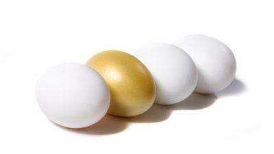 Altın yumurta nedir?