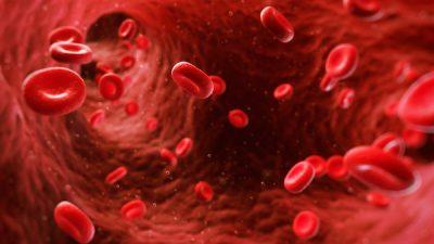 Thalasemia minor (akdeniz anemisi) kısırlık nedeni mi ?