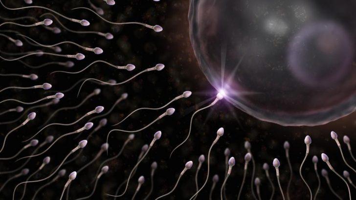 Azosperm sorunu olan erkekler çocuk sahibi olabiliyor mu?
