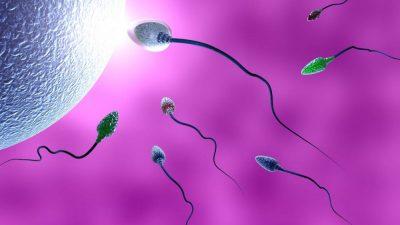 Tüplerin alınması ,Çoğul gebelik Riski ,Bebek Tedavilerinde Hasta Soru ve Doktor Cevapları -67-