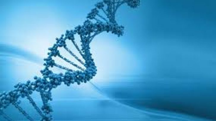 Genetik Tanı ve Tüp Bebek Tedavisi
