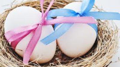Donor Yumurta , Yumurta Donasyonu  Nedir?