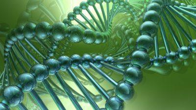 Genetik nedenler erkek kısırlığına neden olabilir.