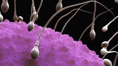 Açıklanamayan kısırlık vakaları sperm DNA hasarlarından olabilir.
