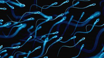 Erkek Spermi ile ilgili ilginç istatistikler