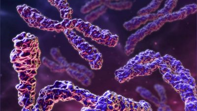 Kromozomların Kapsamlı Taranması Nedir ? Prof. Dr. Bülent Tıraş