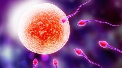 Tüp Bebek Tedavileri Hasta Soru ve Doktor Cevapları-19-