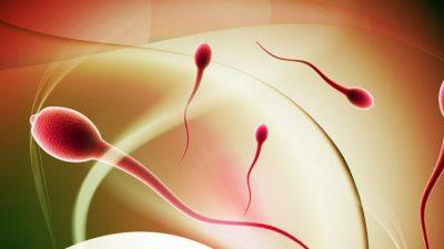 Tüp Bebek Tedavileri Düşük, PCO, Azosperm ,Blastokist Hasta Soruları ve Doktor Cevapları -37-