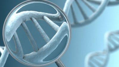 Preimplantasyon Genetik Tanı  (PGT) nedir? Kimlere uygulanır ?