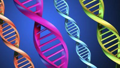 Hangi genetik problemler sperm üretimini etkiler?