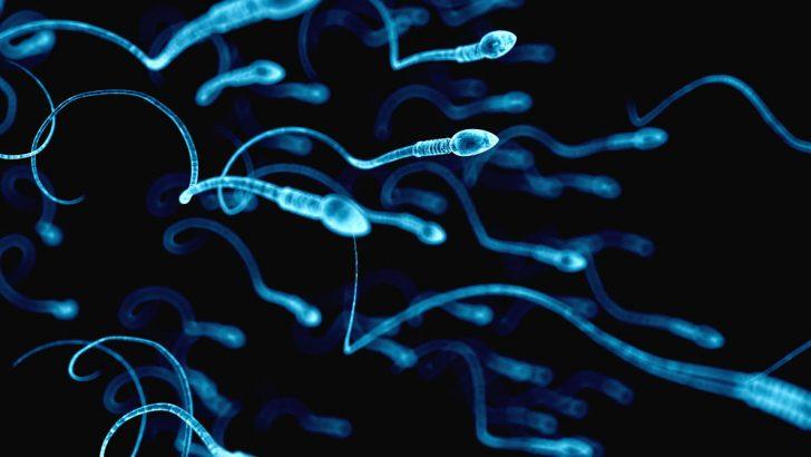 Azosperm olan hastalarda canlı ve hareketli sperm çıkıyor mu?