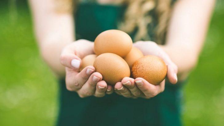 Erken Yumurta Yetmezliği belirtisi ,nedeni ,teşhisi ve tedavisi