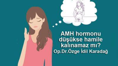 AMH hormonu düşükse hamile kalınamaz mı?  Op.Dr.Özge İdem Karadağ