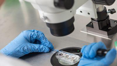 Tüp bebekte 23 çift kromozom genetik olarak taranması her tedavide gerekli mi? Op.Dr.Çağlar Yazıcıoğlu