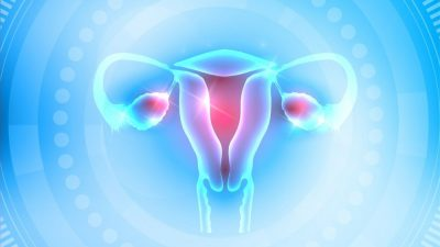 Tüp Bebek Tedavisinde Sağlıklı yumurta icin 90 gün -2-