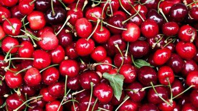Doğurganlığa destek olan yaz meyveleri