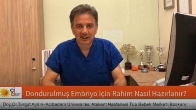 Dondurulmuş Embriyo için Rahimin hazırlanması