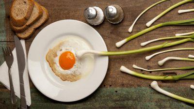 Yumurta ve Sperm Sağlığı için Öneriler -2-