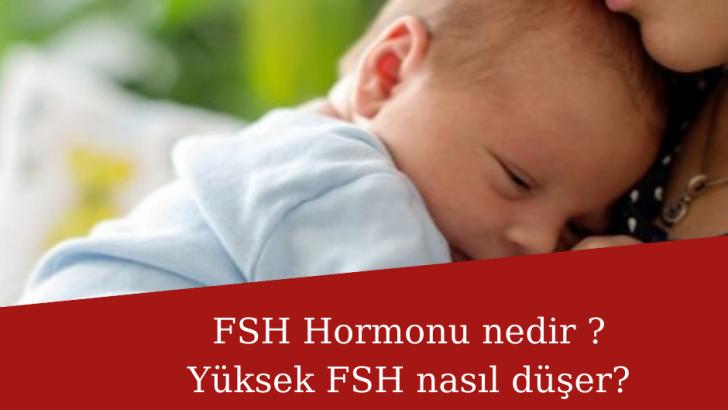 FSH Hormonu nedir ? Yüksek fsh nasıl düşer? FSH hormonu yüksek iken hamile kalanlar